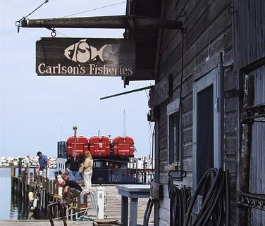 Carlsons-Fisheries-Fishtown