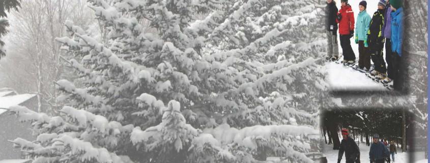 Snowshoe-Stampede