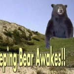 sleeping-bear1